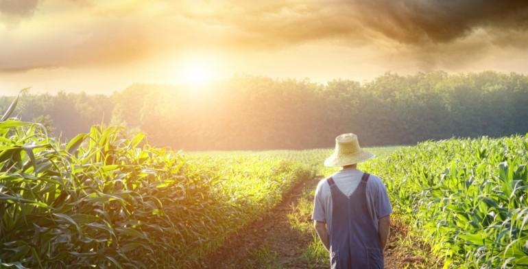 Imprenditore agricolo